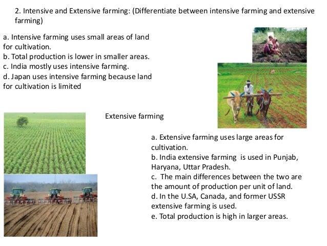nios std x social science Ch 12 agriculture