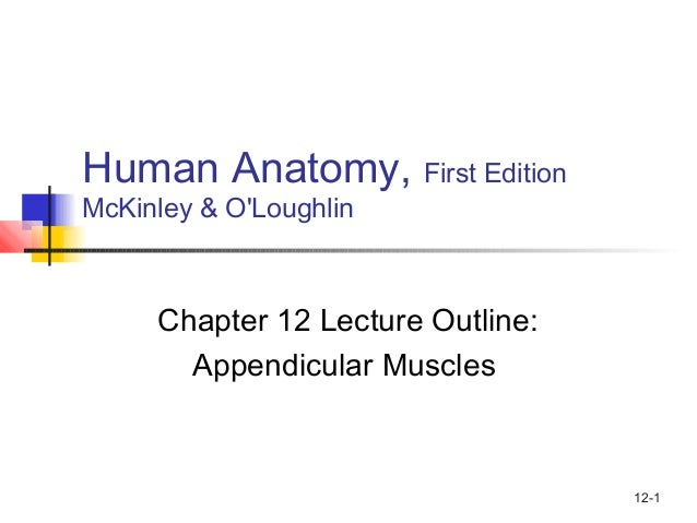 12-1 Human Anatomy, First Edition McKinley & O'Loughlin Chapter 12 Lecture Outline: Appendicular Muscles