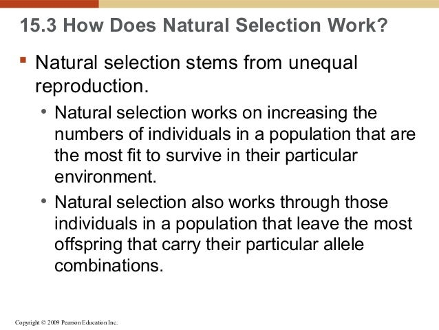Natural Selection Acts Directly On The Genotype Of An Organism