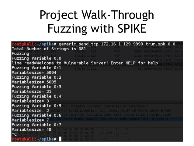 CNIT 127 Ch 16: Fault Injection and 17: The Art of Fuzzing