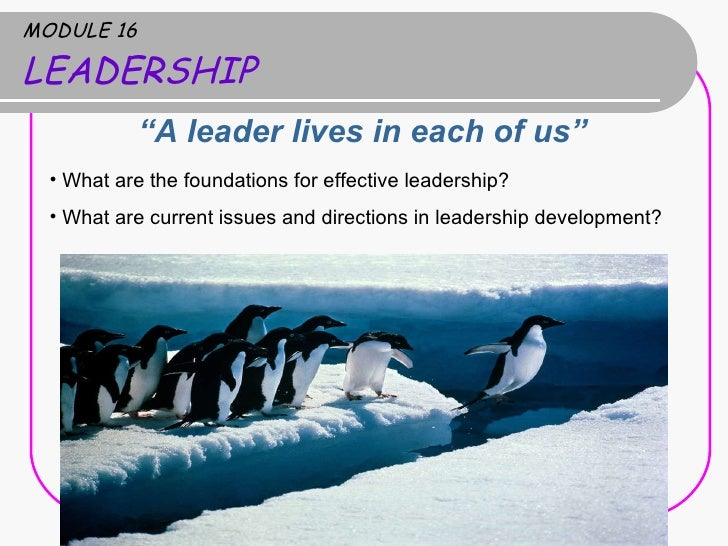 "MODULE 16 LEADERSHIP <ul><li>"" A leader lives in each of us""  </li></ul><ul><li>What are the foundations for effective lea..."