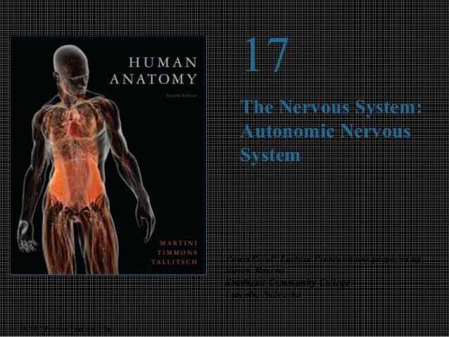 © 2012 Pearson Education, Inc.  17  The Nervous System:  Autonomic Nervous  System  PowerPoint® Lecture Presentations prep...