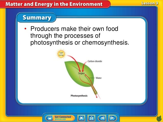 Do Organisms Make Their Own Food In Chemosynthesis