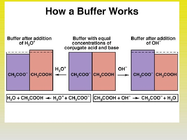 ph and buffer solution Instructions for mixing ph buffers a buffer solution resists changes in ph as a chemical reaction takes place in the solution using a buffer as a matrix for your.