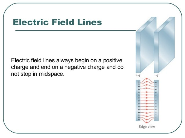 The number of lines leaving a positive charge or entering a negative charge is proportional to the magnitude of the charge...