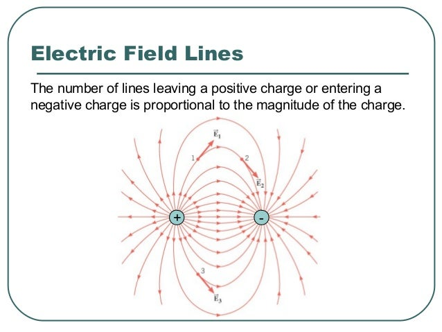 Electric Field Lines + +
