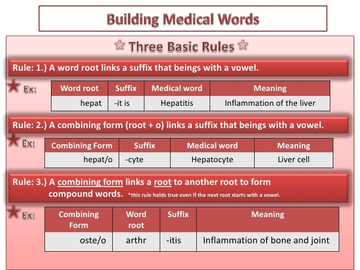 Chapter 1: Basic Elements of a Medical Word