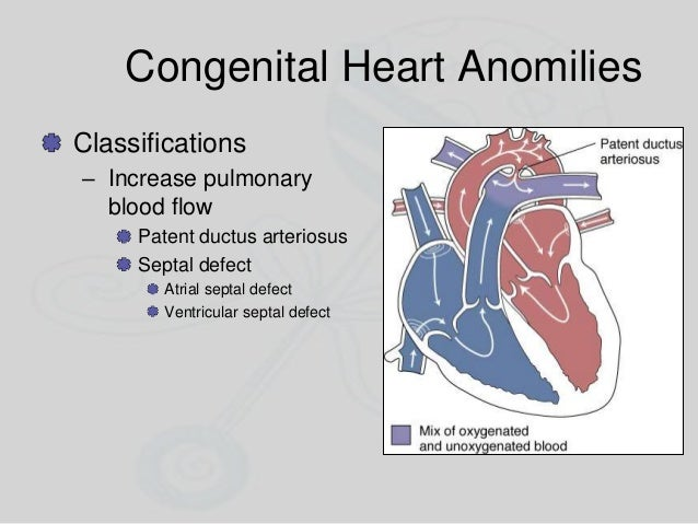 Congenital Heart Anomilies Classifications – Increase pulmonary blood flow Patent ductus arteriosus Septal defect Atrial s...
