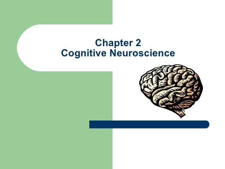 Chapter 2 Cognitive Neuroscience