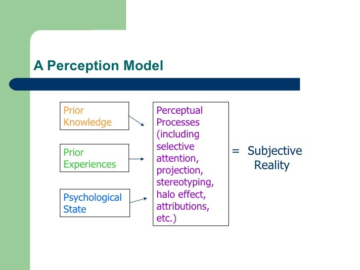 concept experiences perception Ap psychology sensation & perception ap psychology terminology for sensation and perception  sensory experience that occurs after a visual experience has been.