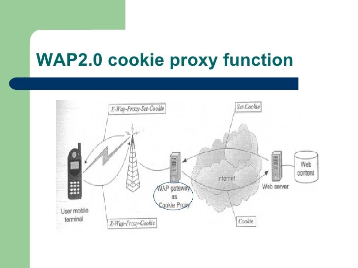 WAP2.0 cookie proxy function