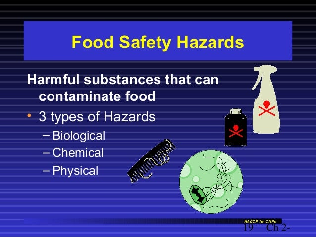 What Are The Types Of Hazards That Can Contaminate Food