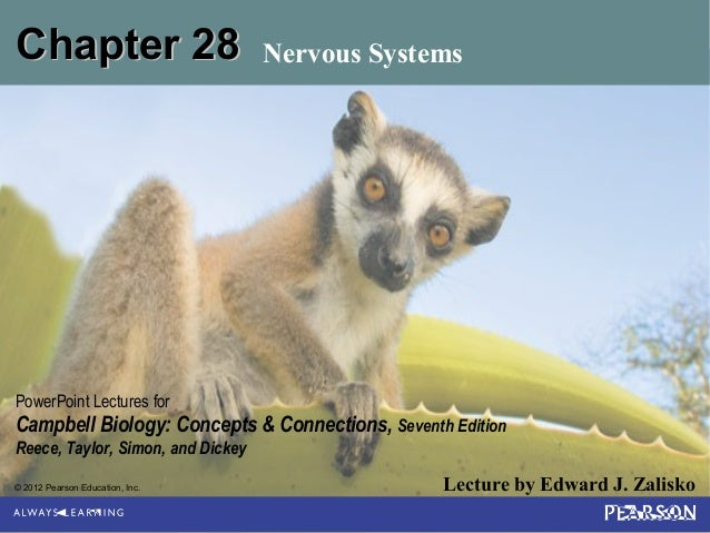 © 2012 Pearson Education, Inc. Lecture by Edward J. Zalisko PowerPoint Lectures for Campbell Biology: Concepts & Connectio...