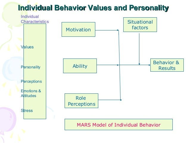 role of perception in organizational behaviour Individual behavior in organization selective perception: what are the roles of an individual behaviour in group performance.