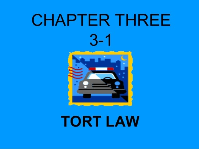 CHAPTER THREE 3-1  TORT LAW