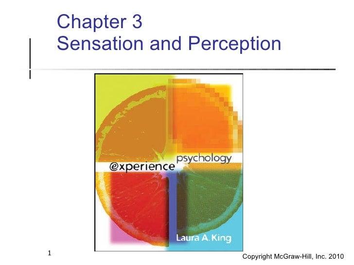 <ul><ul><li>Chapter 3 </li></ul></ul><ul><ul><li>Sensation and Perception </li></ul></ul>