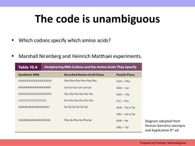 Ch3 the genetic code
