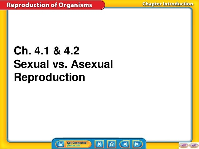 Asexual and sexual reproduction compare car