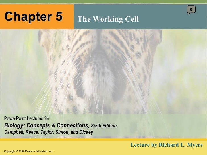 Chapter 5 The Working Cell 0 Lecture by Richard L. Myers