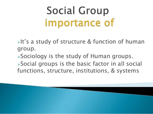 Importance of Groups in an Organization