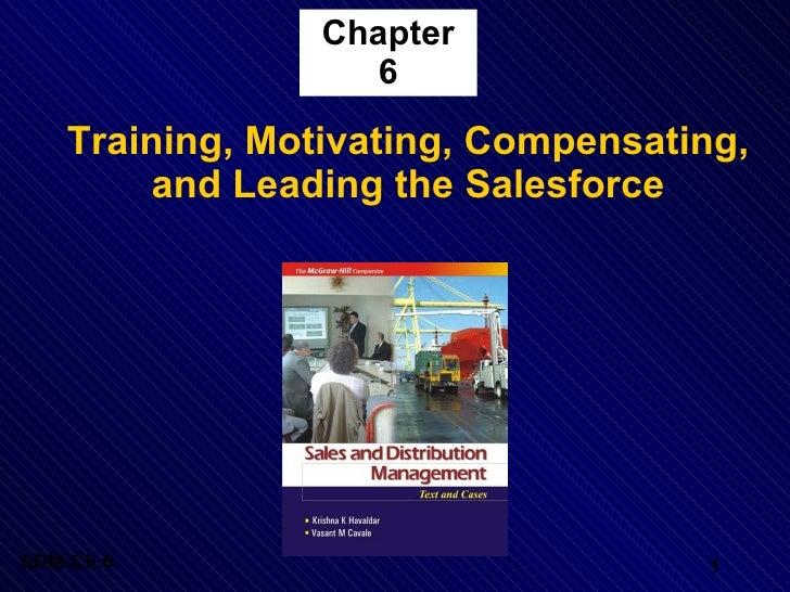 Chapter 6 <ul><li>Training, Motivating, Compensating, and Leading the Salesforce </li></ul>