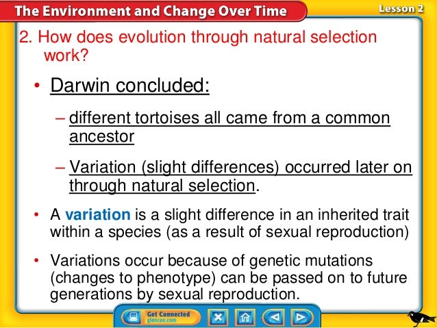 Natural Selection And Sexual Selection Difference