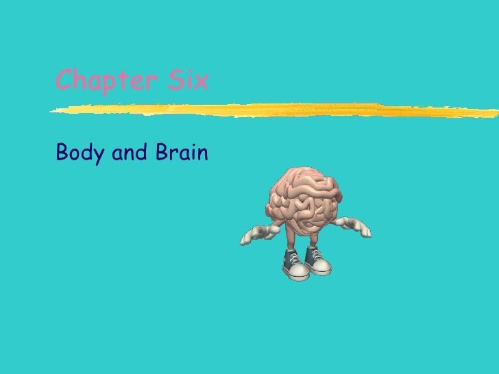 Chapter Six Body and Brain
