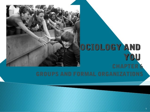 SOCIOLOGY AND YOU CHAPTER 6 GROUPS AND FORMAL ORGANIZATIONS  1