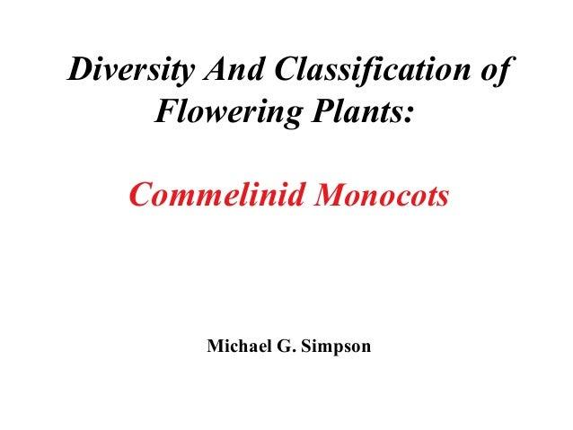 Diversity And Classification of Flowering Plants: Commelinid Monocots Michael G. Simpson