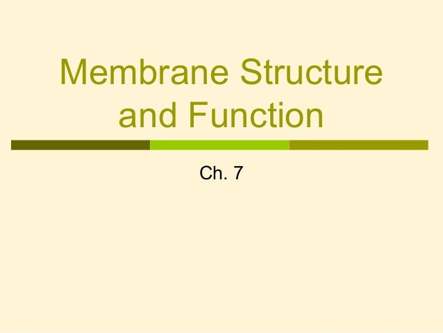 Membrane Structure and Function Ch. 7