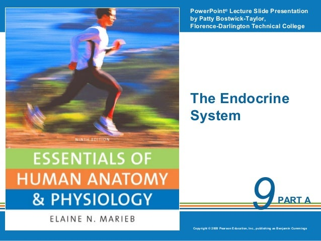 PowerPoint® Lecture Slide Presentation by Patty Bostwick-Taylor, Florence-Darlington Technical College  The Endocrine Syst...