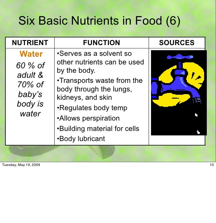 10 Six Basic Nutrients In Food