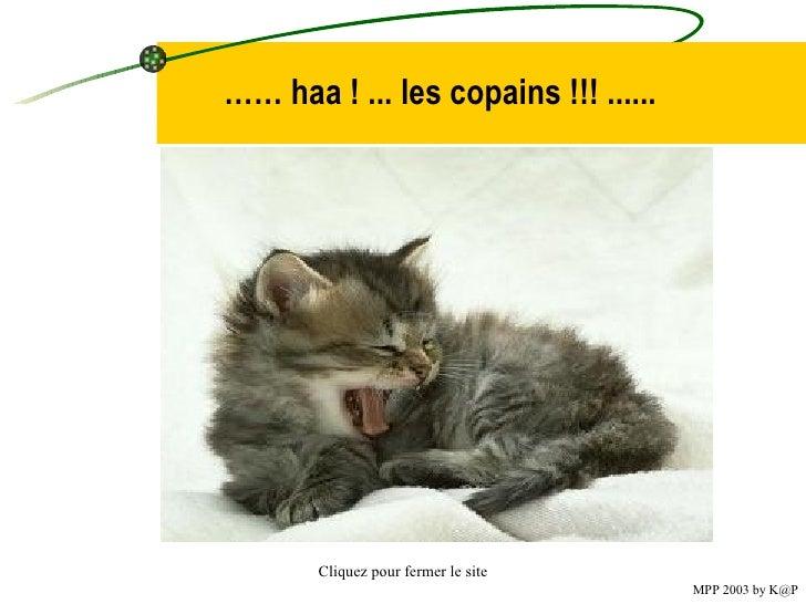 ……  haa  !  ... les copains  !!!  ......   Cliquez pour fermer le site MPP 2003 by K@P