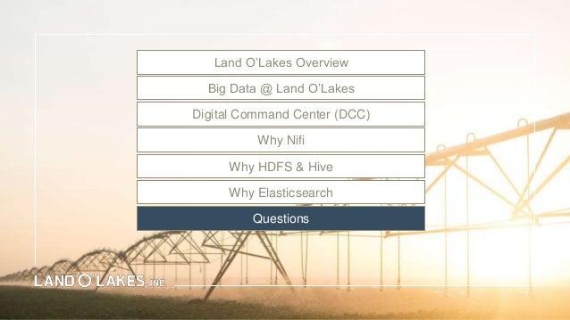 Land O. Lakes Marketing Strategy
