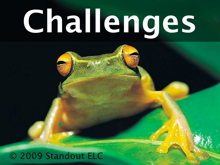 Challenges© 2009 Standout ELC