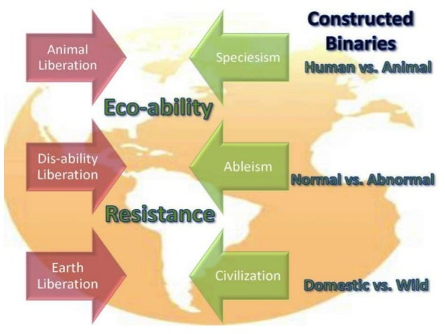 essay on ableism Ableism, disability and society order description research essay students will write an essay on the following topic: a) critically discuss the extent to which the social model of disability is representative of the lived.