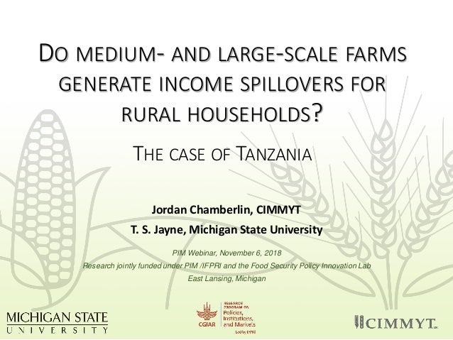 DO MEDIUM- AND LARGE-SCALE FARMS GENERATE INCOME SPILLOVERS FOR RURAL HOUSEHOLDS? THE CASE OF TANZANIA Jordan Chamberlin, ...
