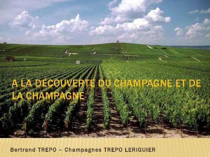 Bertrand TREPO – Champagnes TREPO LERIGUIER