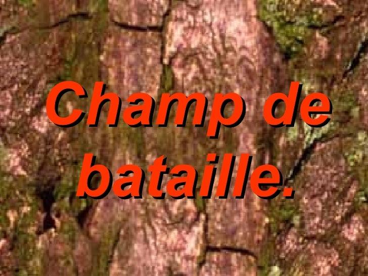 Champ de bataille.