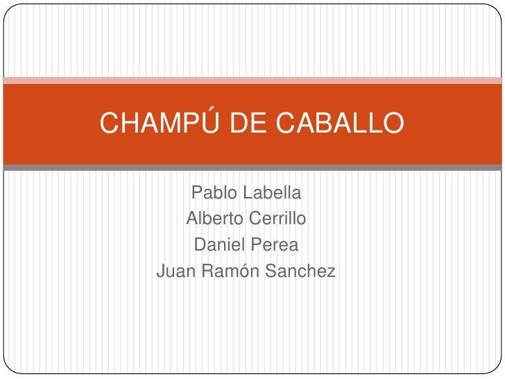 CHAMPÚ DE CABALLO      Pablo Labella      Alberto Cerrillo       Daniel Perea   Juan Ramón Sanchez