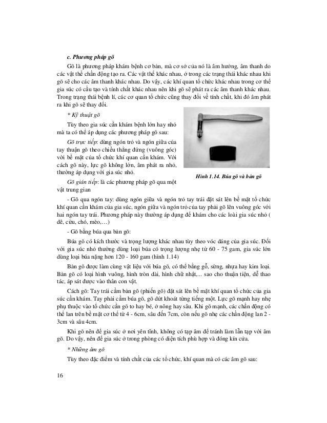 16 c. Phương pháp gõ Gõ là phương pháp khám b nh cơ b n, mà cơ s c a nó là âm hư ng, âm thanh do các v t th ch n đ ng t o ...