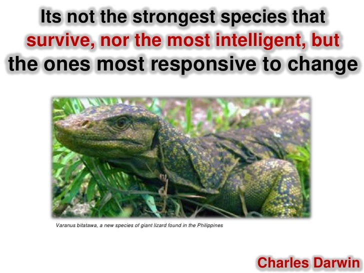 Its not the strongest species that survive, nor the most intelligent, butthe ones most responsive to change<br />Varanusbi...
