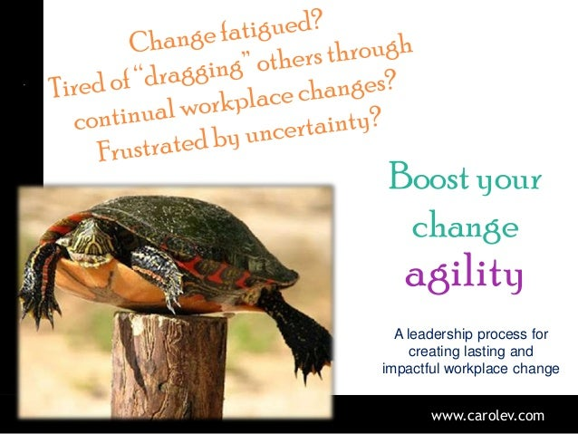 ONTARGET Boost your change agility A leadership process for creating lasting and impactful workplace change www.carolev.com