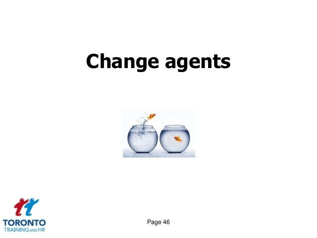 reframing the organization and the role of a change agent Reimagine and revitalize your business strategy by applying practices from design thinking.