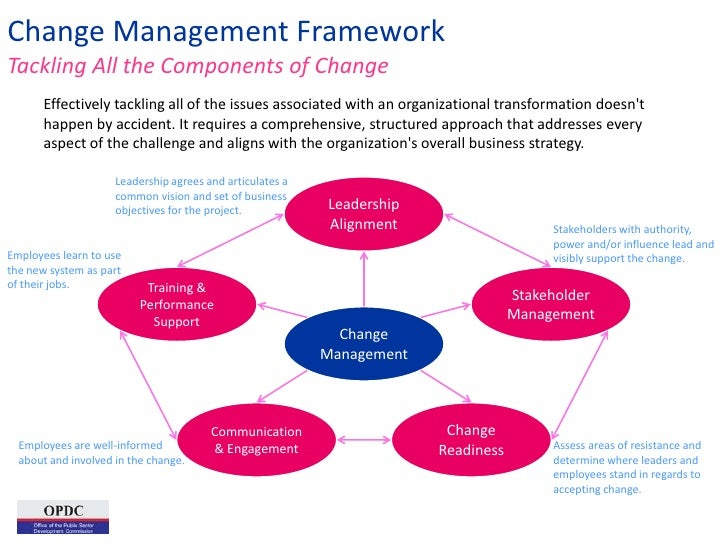 organizational change and management pdf