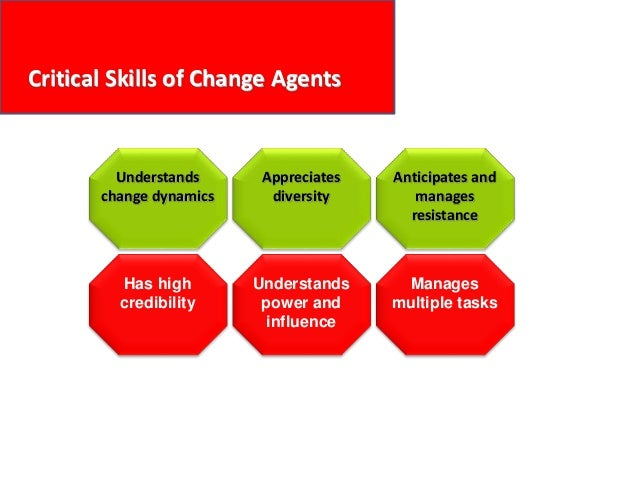 Critical Skills of Change Agents Understands change dynamics Appreciates diversity Anticipates and manages resistance Unde...