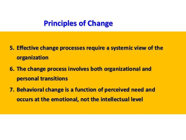 5. Effective change processes require a systemic view of the organization 6. The change process involves both organization...