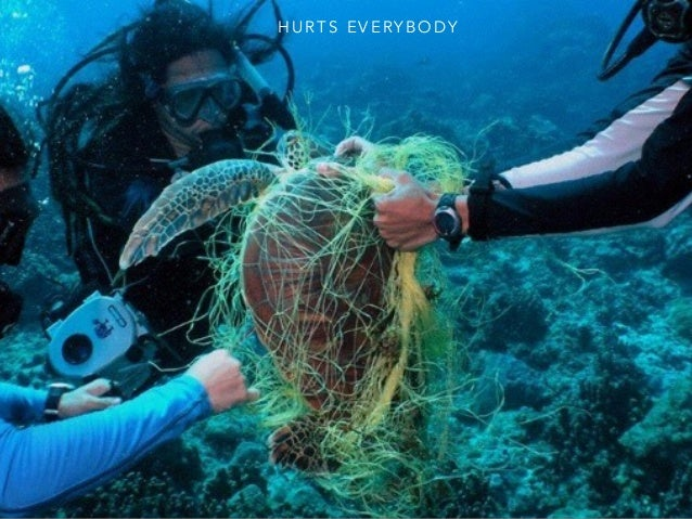 Ocean Pollution Pictures 98