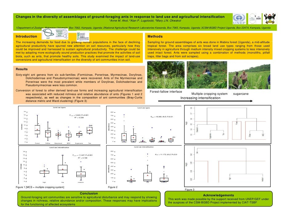 Changes in the diversity of assemblages of ground-foraging ants in response to land use and agricultural intensification  ...