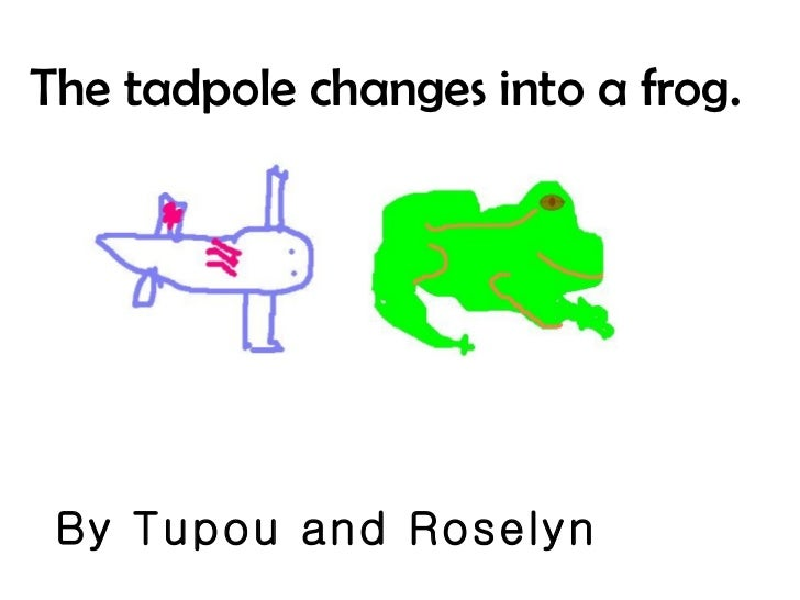 The tadpole changes into a frog. By Tupou and Roselyn